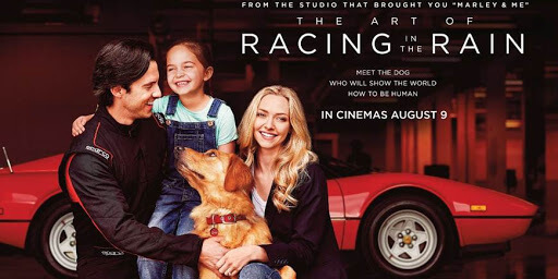 The Art of Racing in the Rain Movie Reviews and Ratings